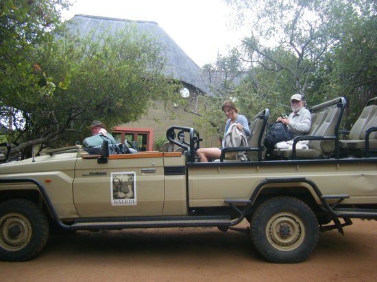 Naledi Bushcamp and Enkoveni Camp: Just back from safari