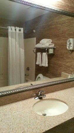 Holiday Inn Express & Suites Cincinnati Northeast-Milford: bath & shower