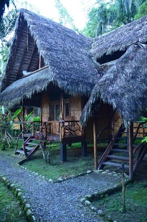 Cotococha Amazon Lodge: Our cabin.  Other stairs are for upstairs unit.
