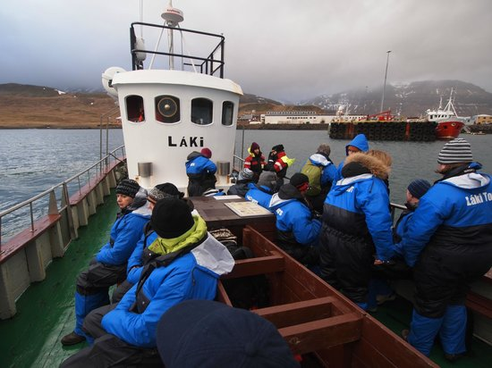 Laki Tours: The boat going out to find the Orcas