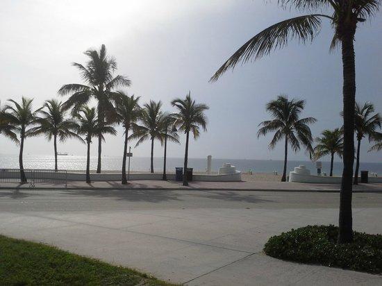 Starbucks: Fort Lauderdale Beach