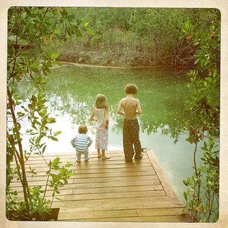 Rosewood Mayakoba: morning fish feeding on the private pier