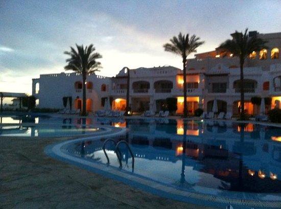 Continental Plaza Beach Resort: Pool area
