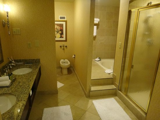 Hilton St. Louis at the Ballpark: Bathroom Overall View
