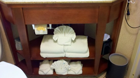 Hampton Inn Charlottesville : Nicely prepared towels in bathroom