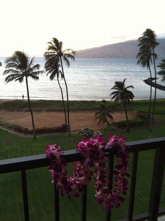 Koa Lagoon: View from the deck
