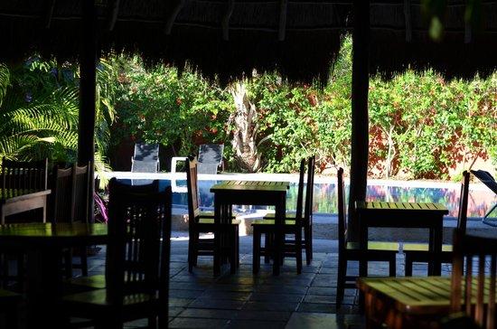 Don Diego de la Selva: Au restaurant