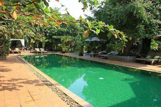 The Kabiki: Pool in the lovely garden.