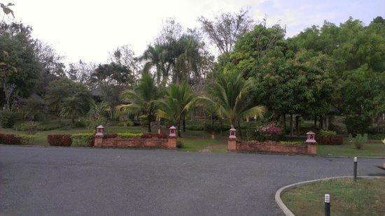 Suansawan Resort Chiang Mai: Property Landscape