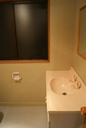 Pinewood Motels: Bathroom