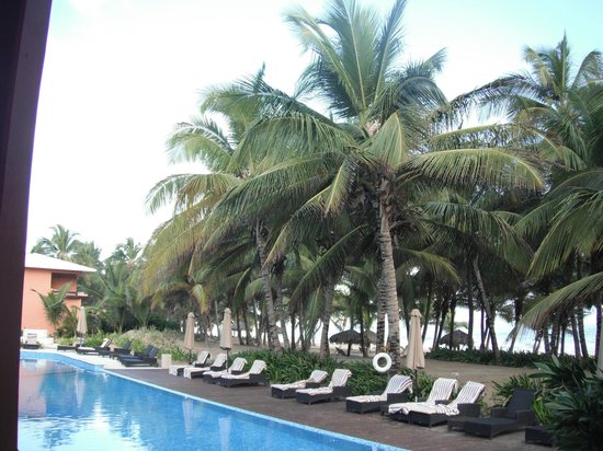 Sivory Punta Cana Boutique Hotel: Les cocotiers