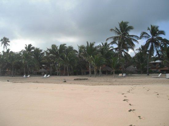 Sivory Punta Cana Boutique Hotel: La plage déserte