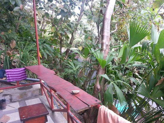 Pura Vida Hostel - Manuel Antonio: Balcony outside rooms