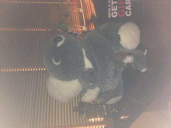 Photo of Australian Restaurant The Thirsty Koala at 3512 Ditmars Blvd, Astoria, NY 11105, United States