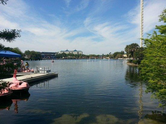 Renaissance Orlando at SeaWorld: Seaworld