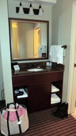 Sleep Inn at Court Square: bathroom basin