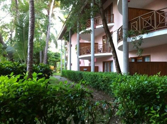 Natura Park Beach - EcoResort & Spa: vue de notre balcon