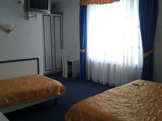 Garni Hotel Vila Bojana: Room view ( from entrance )