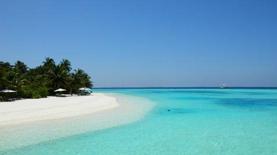 Vakarufalhi Island Resort: Strand Lagunenseite