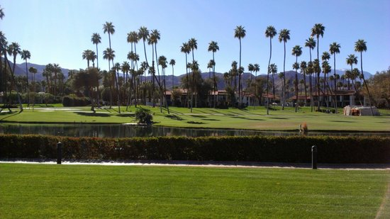 Omni Rancho Las Palmas Resort & Spa : View from our room