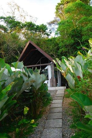 Oxygen Jungle Villas: Villa #1