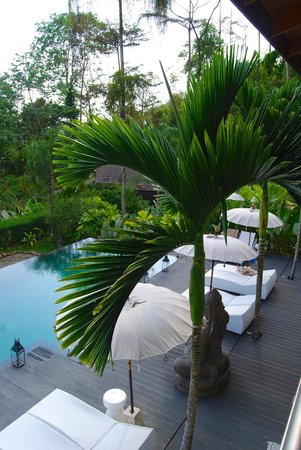Oxygen Jungle Villas: Overlooking the pool from spa
