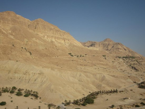 Ein Gedi Hotel: mountains surrounding dead sea