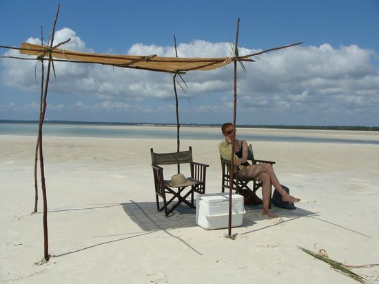 Avicennia Island: our private shade that they built on the sandbar