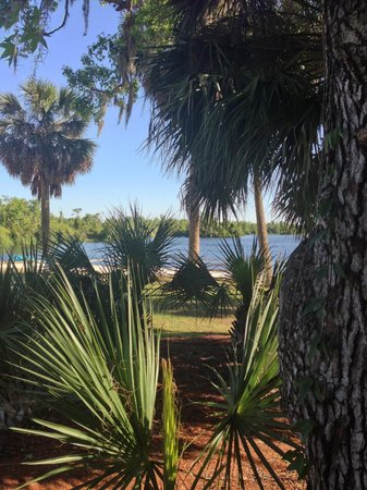 Cypress Cove Nudist Resort: Grounds
