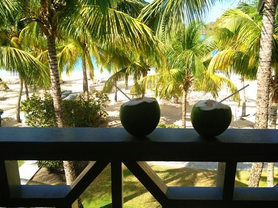 Carlisle Bay Antigua: view from the front of the room