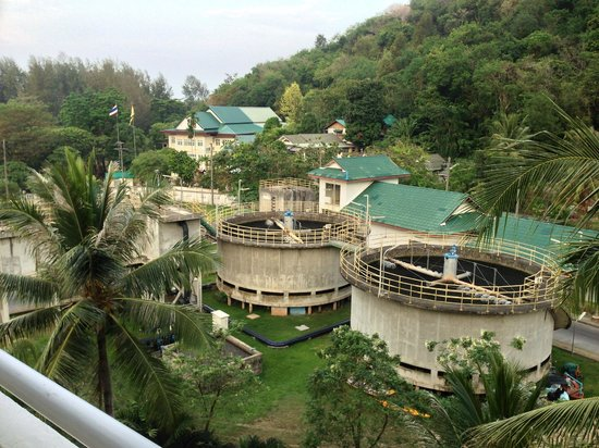 Phunawa Resort: The sewage plant from the corridor