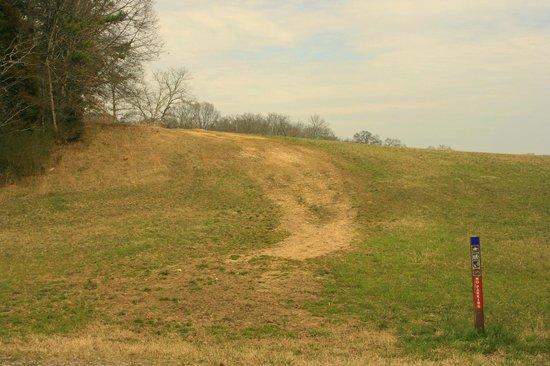 Chickamauga Battlefield: Trail