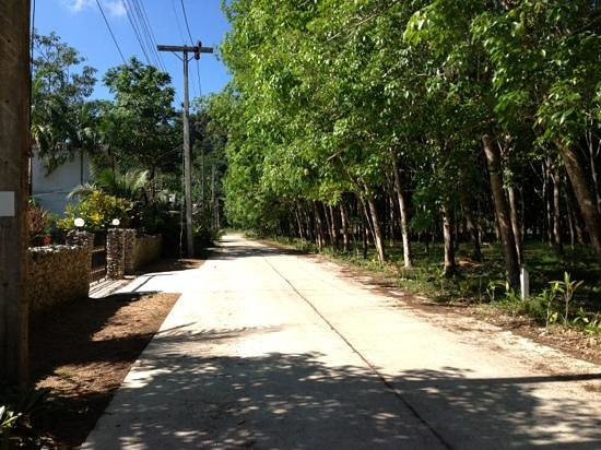 Ao-Nang Bamboo Bungalows: Street leading to d main road