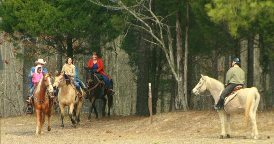 Chickamauga and Chattanooga National Military Park: Horses On The Trail
