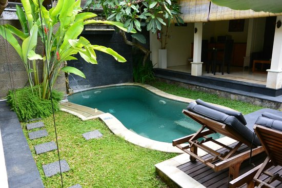Bali Nyuh Gading Villa: Private Pool