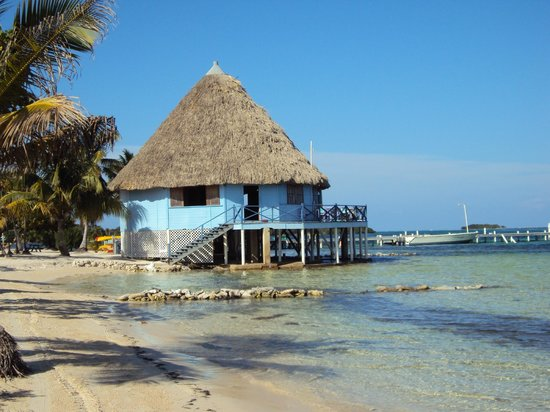 Blackbird Caye Resort: Beach bar
