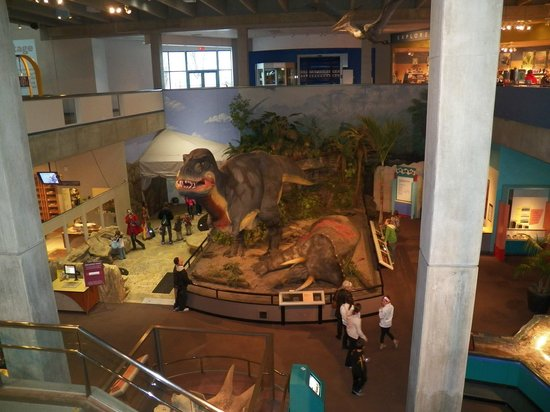 Saint Louis Science Center: The T-Rex and Tricerotops, dig area to the left.
