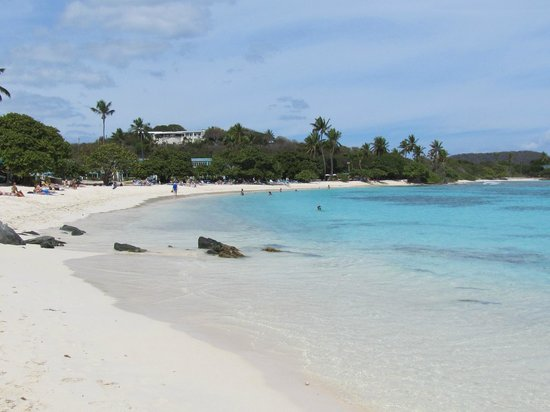 Sapphire Beach Resort: Great snorkeling beach