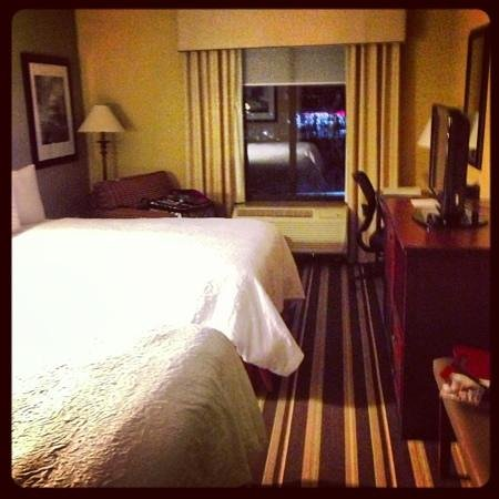 Hampton Inn Washington-Dulles Int'l Airport South: 7th floor room with two double beds