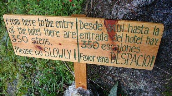 Lomas de Tzununa : O início da subida dos 350 degraus