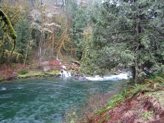 North Cascades Highway: Along the Skagit River