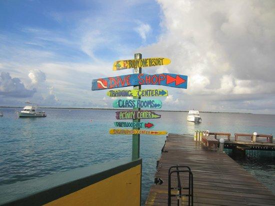Buddy Dive: Dive resort
