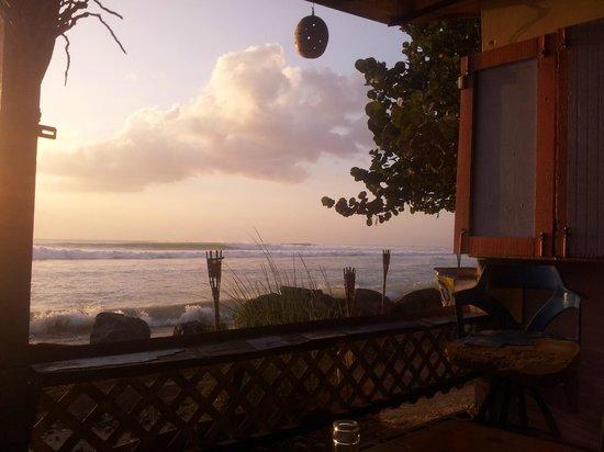 Bago's Beach Bar:                                     The View!