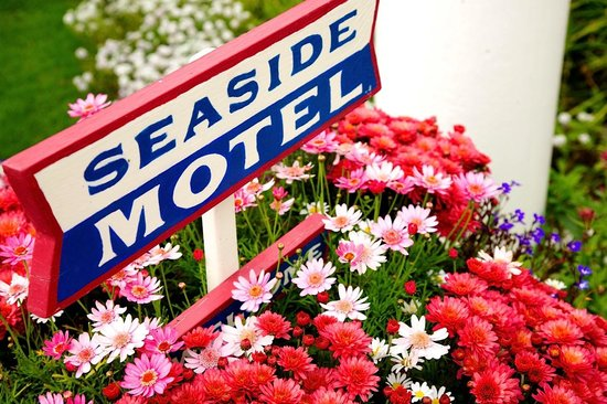Seaside Motel: Welcome!