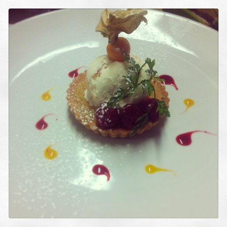 The Kilcot Inn:                   Treacle tart, gooseberry & elderflower ice cream