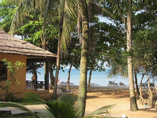 Sea Star Resort: bungalow avec vue sur la mer