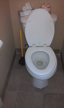 Stone Villa Inn San Mateo - San Francisco SFO:                   Toilet did NOT flush. No wonder there was a filthy plunger right next to it! D