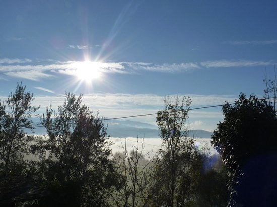 Agriturismo Podere il Poggiolo: View from our villa in the morning