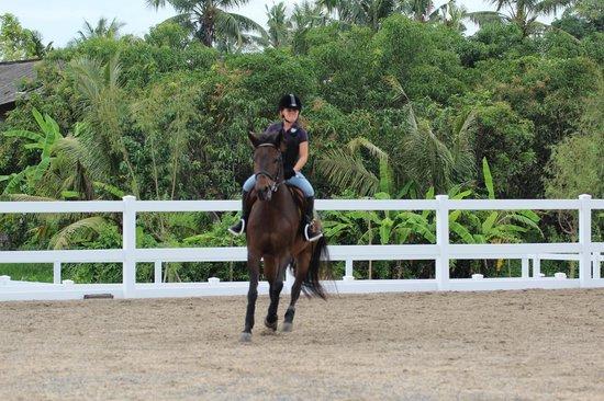 Bali Equestrian Centre: Outdoor arena.