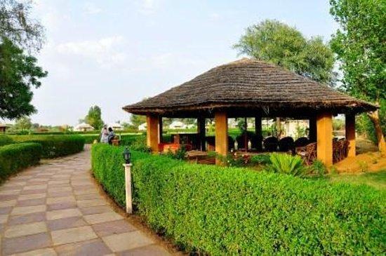 Abhaneri Village Safari Camp: On Entrance - Reception